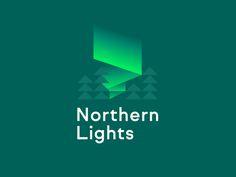 Northern Lights by Jay Fletcher