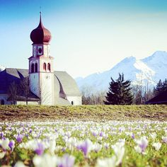 Ein Meer voller Frühlingsboten 🌷🌷🌷. *** Spring arrived with it's messengers 🌷🌷. *** Iris Krug *** #olympiaregionseefeld #leutasch #tirol #austria #urlaub #holiday #berge #reisen #frühling Austria, Tourism, Photo And Video, Mountains, Spring, Places, Holiday, Nature, Travel