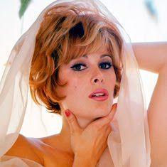 Celebrity Nude Century: Quantum Of Solace (Bond Girl)