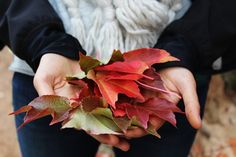 With the first day of Fall approaching it is important to check-some things and do some maintenance on your home.  Clean out the gutters caulk the windows make sure your furnace and/or fireplace is working check your roof to make sure you won't have any leaks.  #GetAssist #Fall #Autumn #September #Homeowner