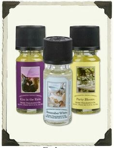 Bridgewater Fragrance Oils (set of 3) from Victorian Trading Co.