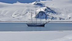 Peter took this picture of Rembrandt van Rijn in Svalbard (Spitsbergen). We love it, because all the sails are down and you get a perfect view of the surroundings. Longyearbyen, Rembrandt, Arctic, Netherlands, Sailing, Cruise, Van, Mountains, Explore