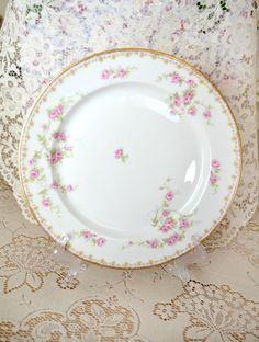 Beautiful Antique Limoges Porcelain Dinner Plate