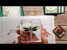 Stampin' Up! Dragonfly Dreams Fancy Fold - YouTube
