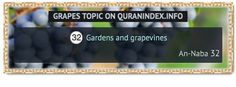 Browse Grapes Quran Topic on http://Quranindex.info/search/grapes #Quran #Islam [78:32]