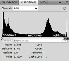 Understanding Histograms, specifically in Photoshop.