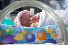 Fort Collins Photography - Premature Baby PVHS NICU ( Neonatal Intensive Care Unit ) by warrendiggles.com, via Flickr