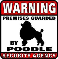 Warning, poodles.