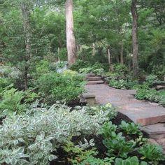 Traditional Landscape/Yard with Pennsylvania Natural Slab Risers, exterior stone floors, Pathway, Shade garden Garden Shrubs, Shade Garden, Lawn And Garden, Garden Paths, Shade Landscaping, Wooded Landscaping, Landscaping Ideas, Forest Garden, Woodland Garden