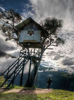 tree-houses5.jpg 500×680 píxeles
