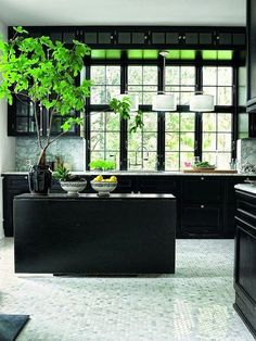 Black and White Kitchen with Touch of Greenery - interesting idea(s) to have cabinets and window trim black - like how they switched it up and put tiny tile on the floor - fancies it up