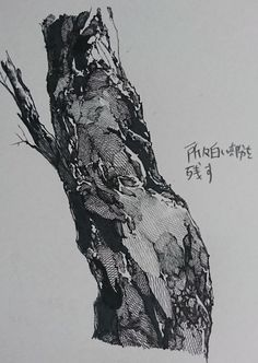 Tree Sketches, Art Drawings Sketches, Cool Drawings, Forest Drawing, Anime Art Fantasy, Comic Drawing, Illustrations And Posters, Drawing Techniques, Tree Art