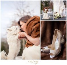 www.caseyhphotos.com wedding in the snow with westie with white floral bouquet with pinecones and natural elements with cookies and milk table with fur shawl destination wedding photography Charleston south Carolina sc dc burke Alexandria fredericksburg richmond charlottesville harrisonburg Virginia va north Carolina nc charlotte wedding engagement ring pics photos greensboro winston Salem charlotte same sex lgbt boone asheville rock hill raleigh bride Alexandria