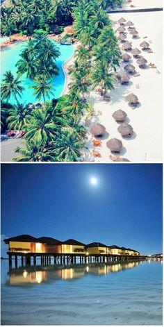 #Sun_Island_Resort & #Spa - #South_Ari_Atoll - #Maldives http://en.directrooms.com/hotels/info/1-14-47-512/