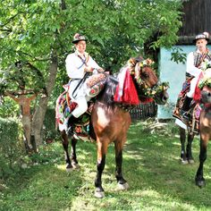 Romanian traditions by Alexandru Uiuiu Print Advertising, Marketing And Advertising, Us Images, Wedding Images, Traditional Wedding, Romania, Wall Art Prints, Horses, Stock Photos