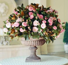 For The Entryway Or Foyer Camellia In Trianon Urn From Winward Home Fine Permanent Botanicals