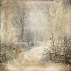 sd_woodland-winter-p4.jpg ❤ liked on Polyvore featuring backgrounds, winter, christmas, art and pictures