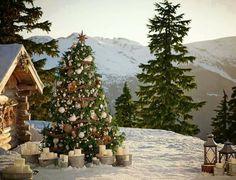 Mountainside Christmas