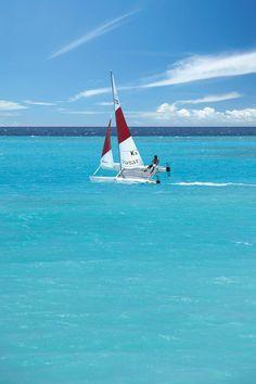 Catamaran Sailing  #aioutlet