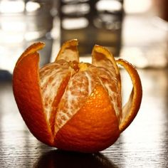 The layers of an orange