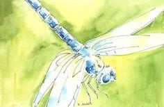 Items similar to Dragonfly Original Watercolor 4 x 6 Art Card, Art Online on Etsy Art Online, Online Art Gallery, Drama Education, First Friday, Art Walk, Watercolor Art, Summer Blues, Hand Painted, Fine Art