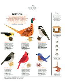 Ryo Takemasa #birds
