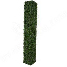 东莞市 Dongguan City Boxwood Hedge, Hedges, Living Fence, Shrubs