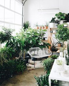 30 of the Cutest Plant Shops Around the World