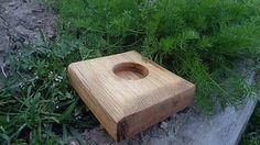 Svatava / Svietnik dubový drobný