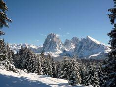 Alpe di Siusi / Seiser Alm / Italy