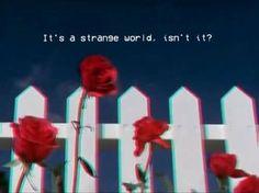 Imagini pentru blue and red aesthetic Aesthetic Roses, Aesthetic Colors, Aesthetic Images, Quote Aesthetic, Aesthetic Vintage, Aesthetic Wallpapers, Blue Aesthetic Grunge, Blue Eyes Aesthetic, 80s Aesthetic