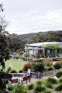The garden and views from Red Hill House - a newly built home and bed and breakfast on the Mornington Peninsula Decoration Inspiration, Garden Inspiration, Garden Ideas, Garden Projects, Outdoor Living, Indoor Outdoor, Outdoor Ideas, Outdoor Spaces, Australian Native Garden