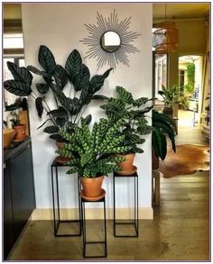 58 DIY Plant Stand ideas to Fill Your Living Room With Green.- 58 DIY Plant Stand ideas to Fill Your Living Room With Greenery living room decoration, plant stand decor, greenery decoration, plants indoor living room - Room Decor, Decor, Living Room Decor, Diy Plants, Plant Stand Decor, Diy Home Decor, Living Room Plants, Interior Design Living Room, Plant Decor Indoor