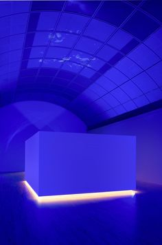 Artists — Diana Thater — Images and clips — Hauser & Wirth