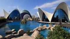Oceanografic, Valencia. Spain