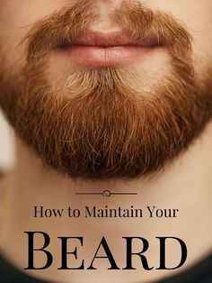 Please, guys. If you have a beard, take care of it! Treat it like a pet! How to Maintain A Beard. From what beard trimmers to use, to what beard shampoo you need.