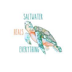 Saltwater Heals Everything Sea Turtle Ladies Round Neck Tshirt - Shelling Life®… Ocean Quotes, Beach Quotes, Turtle Quotes, Turtle Love, Turtle Beach, Visualisation, Ocean Life, Words, Drawings
