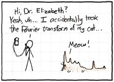 Fourier cat. If this makes any sense to you then I'm so sorry... you're life must have been rough like mine.