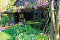 Herbs to Grow in the Shade. http://www.herbcompanion.com/gardening/7-herbs-that-grow-in-shade.aspx