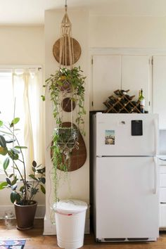 I love the simplicity of these plant hangers. Would be really nice in the kitchen with fresh herbs growing.