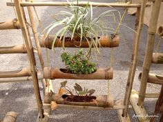 bamboo planters for herbs
