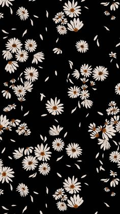 Daisy Wallpaper, Funny Phone Wallpaper, Soft Wallpaper, Cute Patterns Wallpaper, Iphone Background Wallpaper, Butterfly Wallpaper, Cartoon Wallpaper, Simple Wallpapers, Pretty Wallpapers