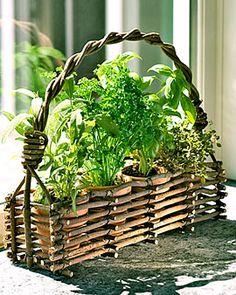 Window Herb Pots