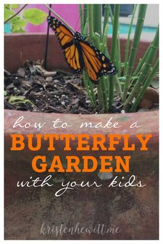 Want to teach your kids about the life cycle of a butterfly? Here's how to start your own butterfly garden, plus video of a butterfly emerging from its chrysalis!