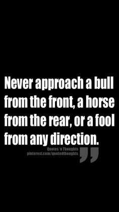 Never approach a bull from the front, a horse from the rear, or an ass from any direction!                                                                                                                                                      More
