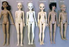 Mini Size BJD with Kish Lark doll
