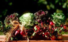 Co se hodí do podzimních truhlíků?