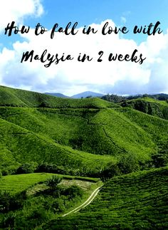 how to fall in love with malaysia in 2 weeks