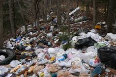 5 reasons everyone should try to stop illegal dumping. #dump #green #trash