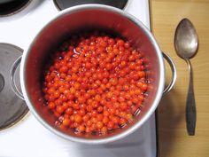 Silkosta rukiiseen – From Pine Bark to Rye: Pihlajanmarjamehu – Rowanberry Juice